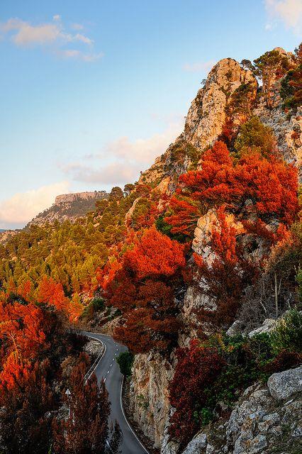 Colors of fire, Mallorca Island
