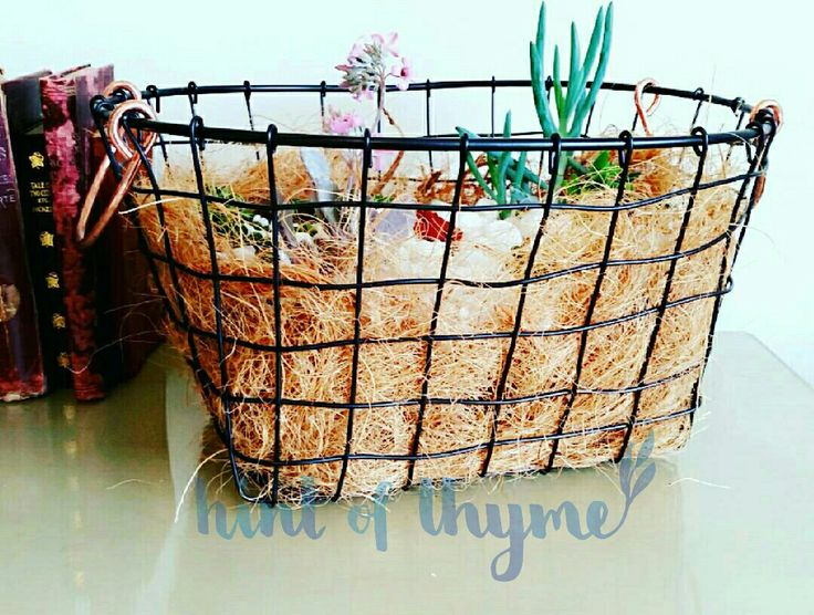 Succulents in basket heaven!! Hand woven metal basket with copper handles.....just gorgeous!