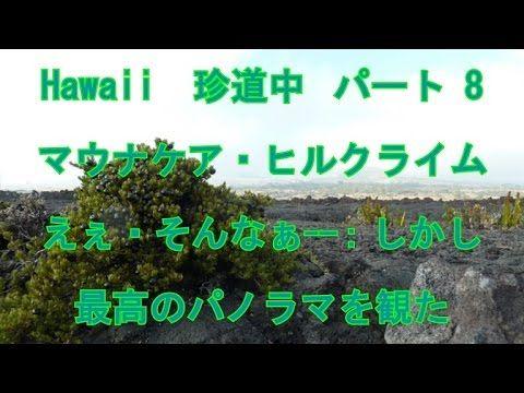 Hawaii 珍道中 パート 8 ハワイ島マウナケア・ヒルクライム えぇ・・そんなぁ惨過ぎる ^^!