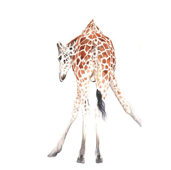Giraffe painting   Print of watercolor painting 5 by Splodgepodge, $15.00