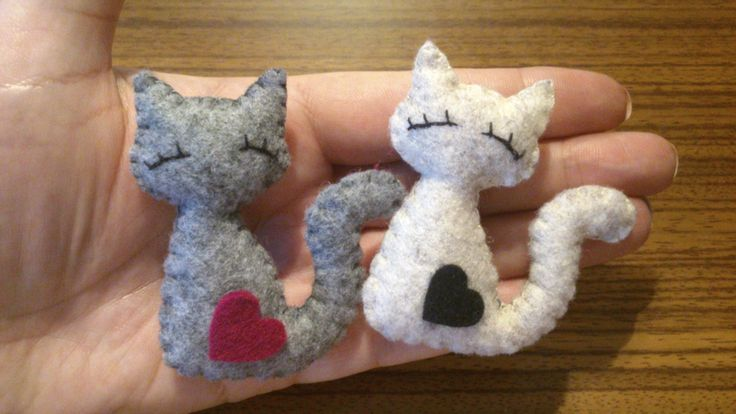 Broszki koty