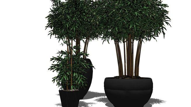 vaso planta - 3D Warehouse