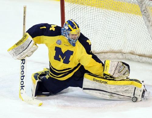 #GoBlue Michigan Hockey
