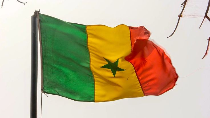 Xavier Niel mise sur les télécoms au Sénégal en rachetant l'opérateur Tigo - https://www.freenews.fr/freenews-edition-nationale-299/galaxie-niel/xavier-niel-mise-telecoms-senegal-rachetant-loperateur-tigo