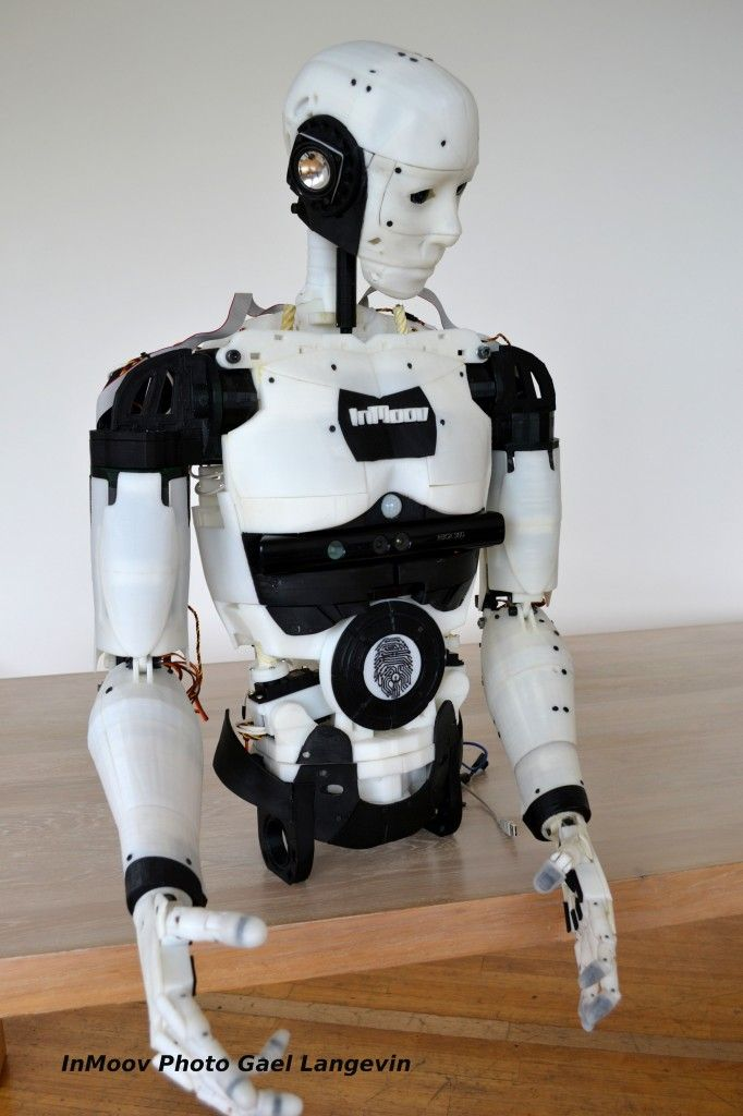 InMoov: an open sourced lifesize robot kit