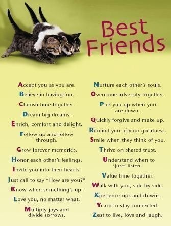 here ya go, bestfriends! I love you guys thanks for always ...  Quotes