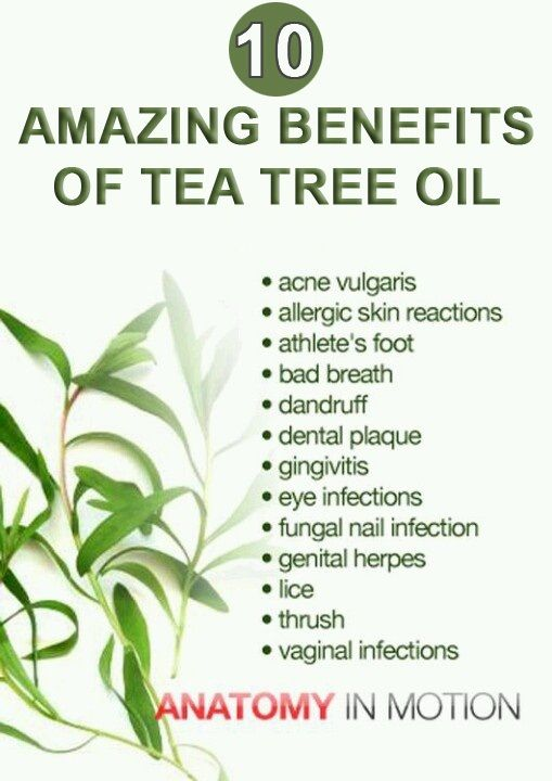 Benefits Of Tea Tree Oil :Tea tree oil helps in strengthening the body's immune system, which may be weakened by stress, illness, consumption of antibiotics and other drugs.