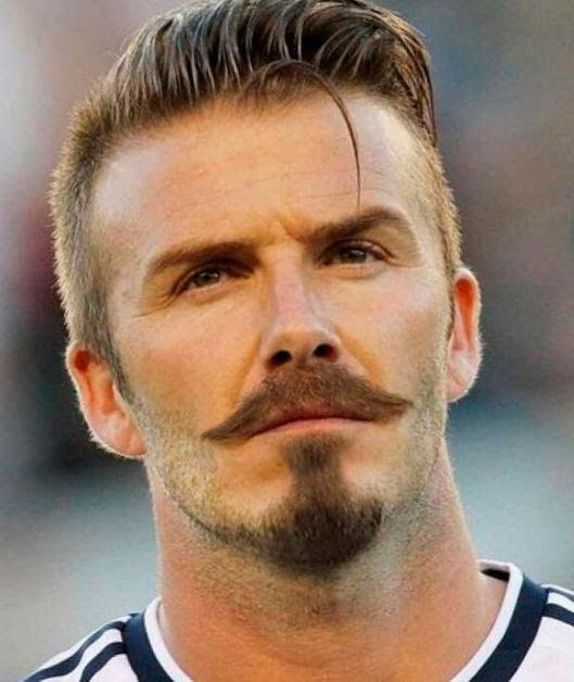 David Beckham CHEVRON Oval Style Beard Circle Beardroyale