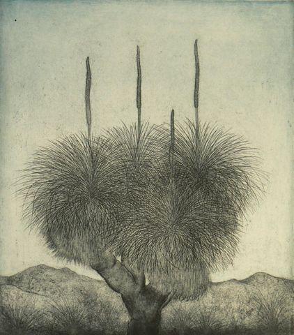 Joseph Austin Xanthorrhoea – Smartart Gallery