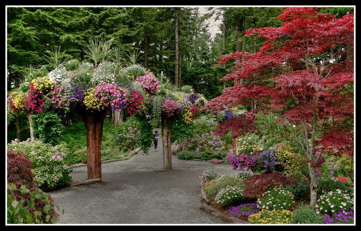 Glacier gardens juneau alaska jardiner a y paisajismo for Paisajismo de patios