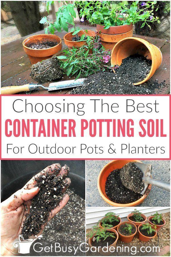 7af1bf0155969ce5a5bd1dc7a73b59ba - Best Soil To Use For Container Gardening