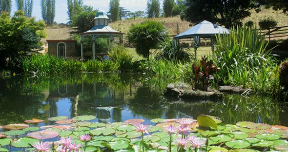 The Garden .Northland wedding venue.