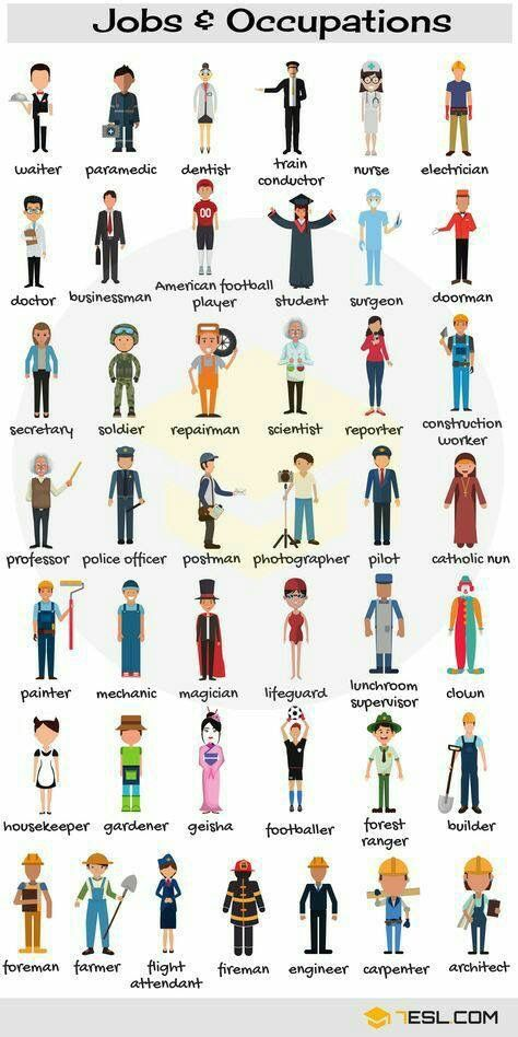 Job and occupations in english language