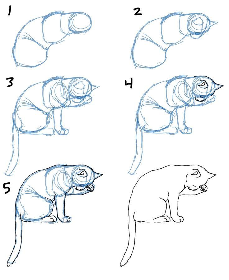 Commentaire dessiner corps de chat pose savane Williams 3524