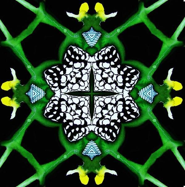Kaleidoscopic Journey 2 by Lindsay Kokoska