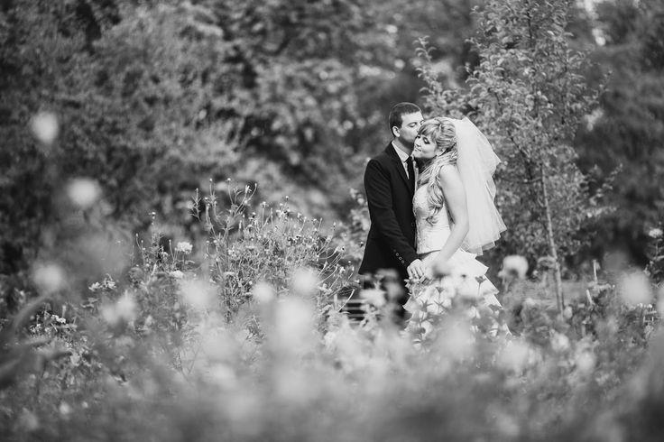 Блог фотографа. Роман Мамрук  : Свадебный фотограф (2)