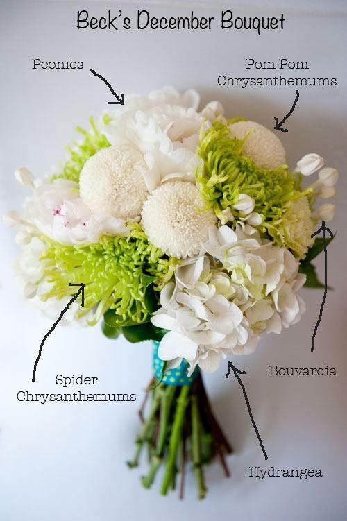 Summer flowers in season | Butterfly Philosophy - Sydney Florist - Sydney Wedding Flowers & Wedding Decorations