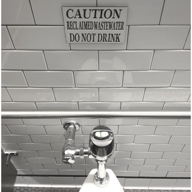 Now that you mention it... I was considering having a drink of the toilet water.