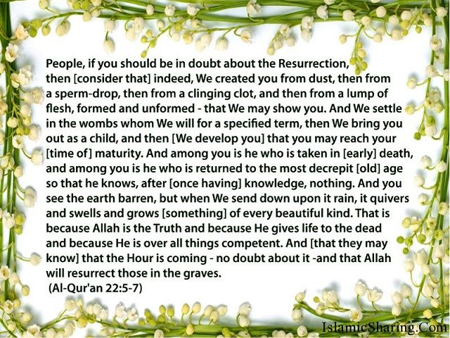 """GoodDay dear all Allah Subhanahu wa Taala says in Quran: """"Certainly We created the human being from an extract of clay… Then We created the clinging mass as a fleshy tissue. Then We created the fleshy tissue as bones. Then We clothed the bones with flesh. Then We produced him as (yet) another creature. So blessed is Allāh (s.w.t), the best of creators!"""" (Q23:12)"""