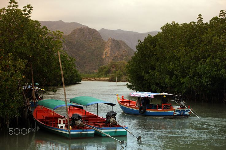 ASIA THAILAND HUA HIN KHAO SAM ROI YOT - the landscape in the Khao Sam Roi Yot Nationalpark on the Golf of Thailand near the Town of Hua Hin in Thailand.