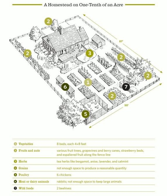 13 best farming images on pinterest permaculture farms for 2 acre farm layout