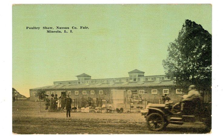 Mineola LI NY - POULTRY SHOW AT NASSAU COUNTY FAIR - Postcard   #1865944184