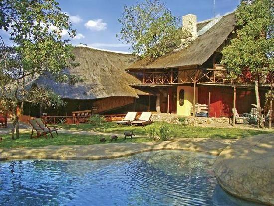 Pezulu Tree House Game Lodge: Pezulu Tree House Lodge,Hoedspruit, Limpopo, South Africa, Africa