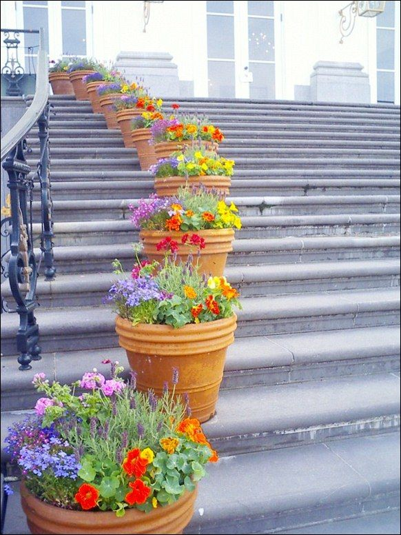 repeating flower arrangements in ceramic pots going up stairs using ceramic flower pots to add - Patio Flower Boxes Ideas