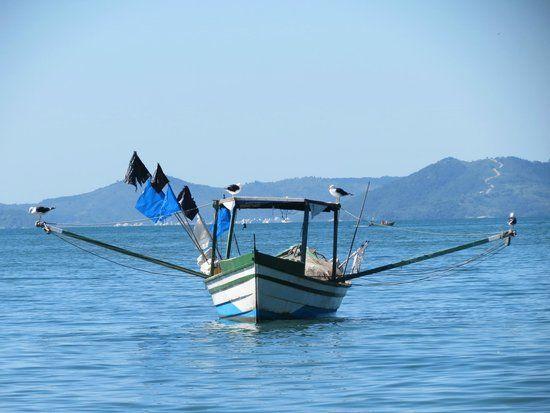 Zimbros Barco de Pesca.