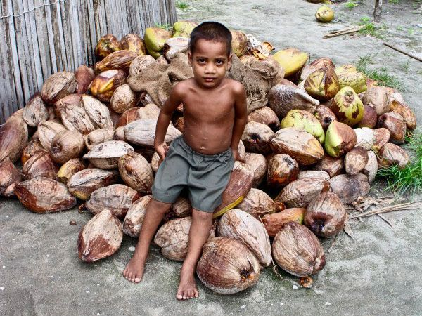 Coconuts and Co-Ops: Preserving Culture in a Kiribati Village - http://www.77evenbusiness.com/coconuts-and-co-ops-preserving-culture-in-a-kiribati-village/