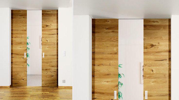 BARTELS DOORS :: Bartels - Modern Custom Interior Doors and Door Hardware Made in Germany - PRODUCTS - Wood & Frameless Glass Doors - Premium Doors - Pocket Doors