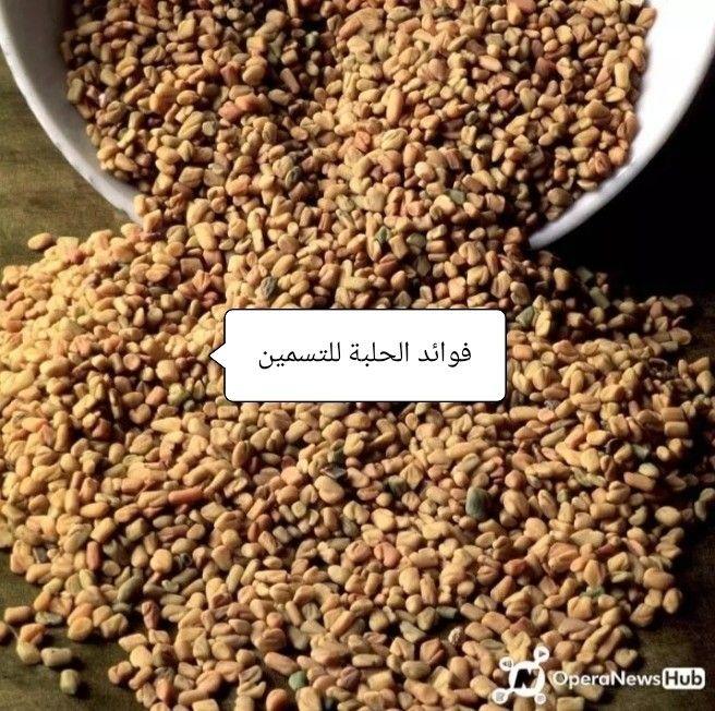 فوائد الحلبة للتسمين How To Dry Basil Herbs Basil