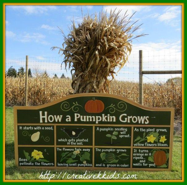 Our field trip to Goebberts Pumpkin Farm.
