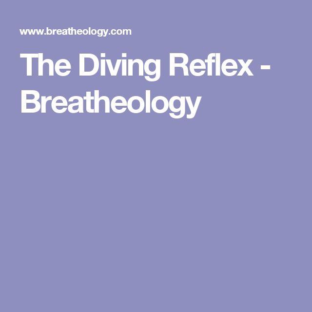 dive reflex essay Uscg coxswain study guide  planning operations conclusion we will write a custom essay sample on uscg coxswain study guide  mammalian dive reflex.