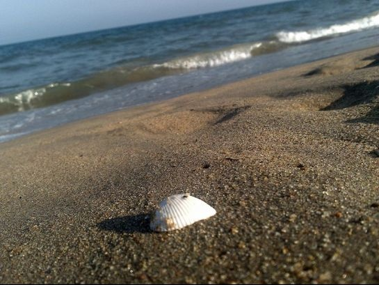 #India, #Pondicherry beach    http://www.nativeplanet.com/pondicherry/photos/4780/