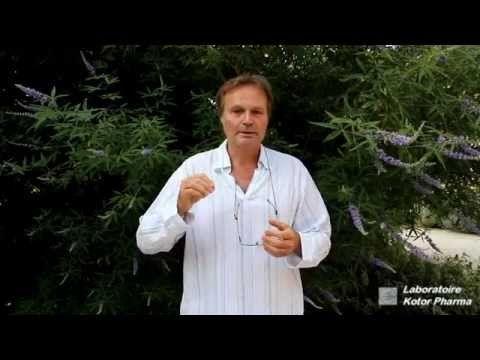 Plante médicinale : Gattilier (Vitex agnus castus) - YouTube