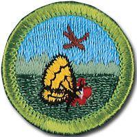 Climbing Merit Badge Worksheet. Worksheets. Releaseboard Free ...
