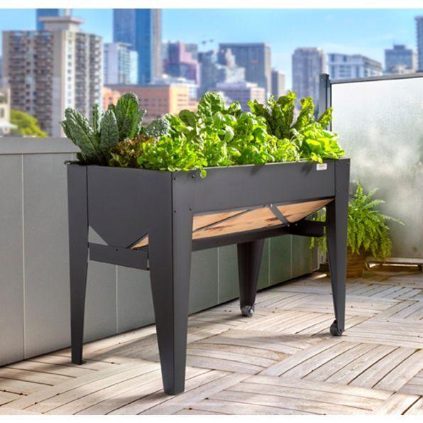 19 best Apartment Gardening images on Pinterest   Apartment ...