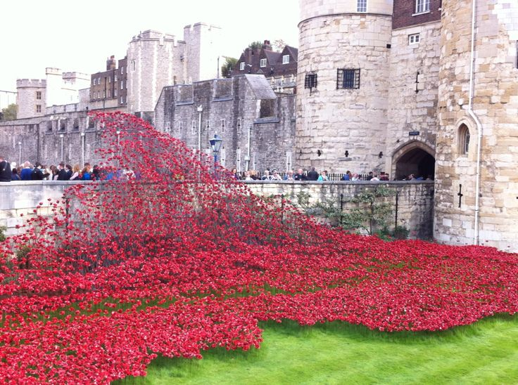 Rememberance display at Tower Of London- WW1
