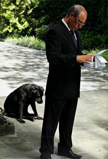 'A Touch of Humour' Papa are we lost? President Vladimir Putin with Koni♡