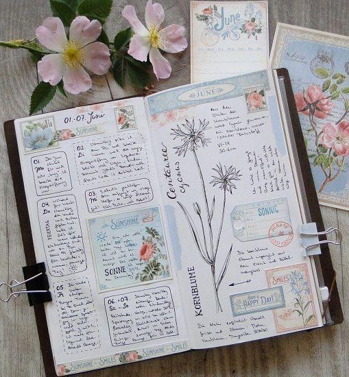 Martina Lenhardt art journal/plant journal