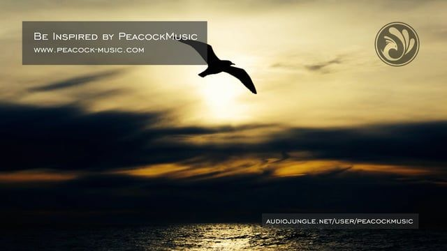 A motivational corporate track prepared in three versions, features acoustic pianos, strings, guitar harmonics, bells, drums and deep bass.   This package includes three versions.  Buy for commercial use: http://audiojungle.net/item/be-inspired/9808712?ref=PeacockMusic AudioJungle watermark is removed when purchased.  Visit my website: www.peacock-music.com