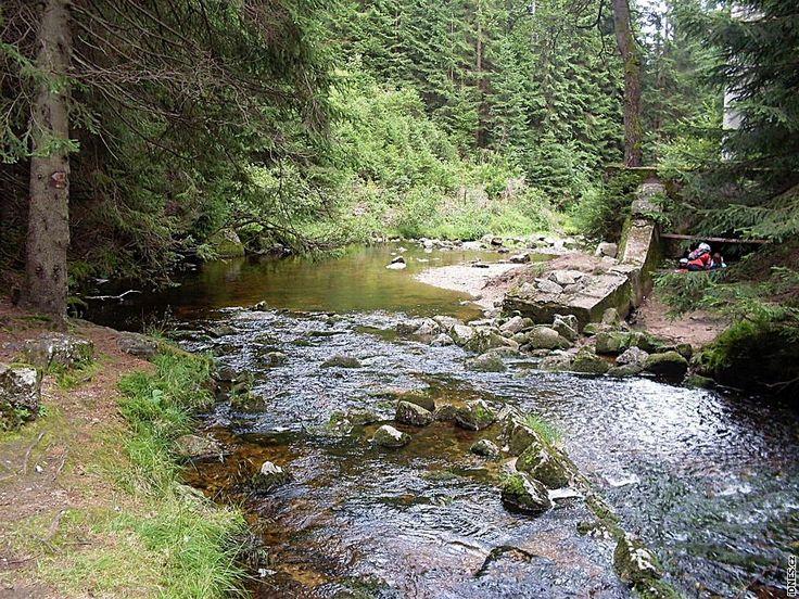 Přehrada měla bránit povodním na řece Bílá Desná. O stavbě se vážně uvažovalo již od roku 1902.