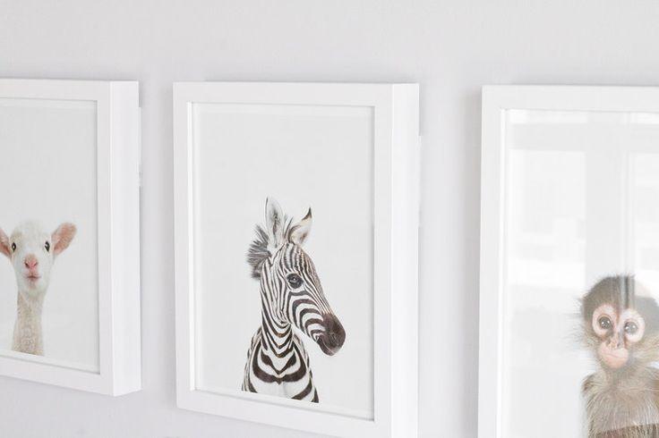 adorable animal prints for baby's nursery