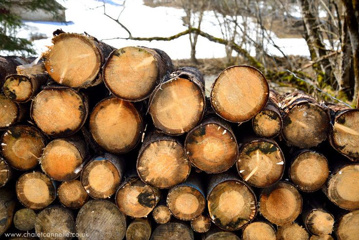 When walking in the forests of the Abondance Valley, you often find a pile of logs from the tree management. I love the pride - always stacked neatly. - River walk, near Chalet Cannelle, Chatel