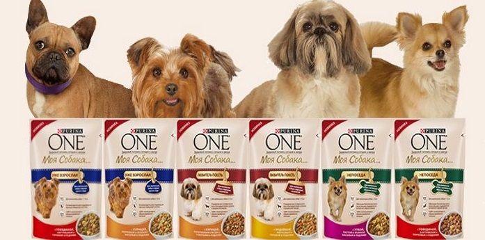 Пурина Ван для собак: Сбалансированный корм эконом-класса