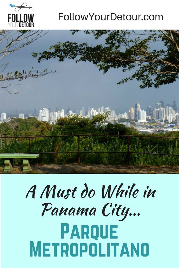 A jungle hike in the middle of metropolitan Panama City! Beautiful views of the Panama City skyline! A must do while visiting Panama City, Panama! Escape the busy city.