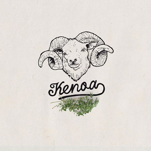 Kenoa  . . #illustration #handdrawn #branding #logo #oldschool #oldblackbamboo #artoftheday