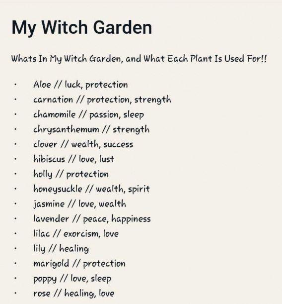 My Witch Garden Herbsgarden Witch Herbs Garden Garden Herbs Garden Fresh Herbs From The Bed Simply Belong To T In 2020 Witch Garden Witch Herbs Eclectic Witch