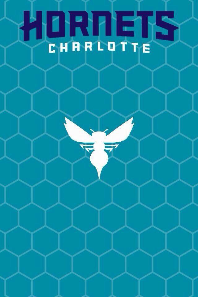 Charlotte Hornets Logo Variation